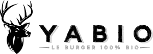 Logo-site-300x107
